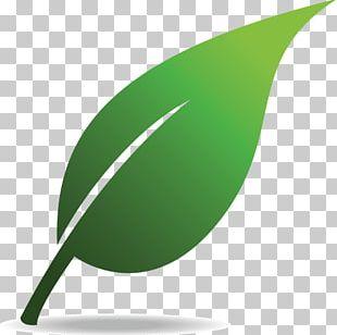 Environmentally Friendly Natural Environment PNG