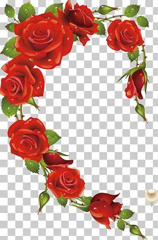 Rose Frame Heart Red PNG