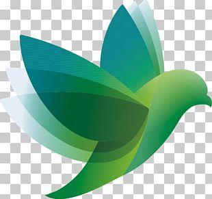 Bird Logo PNG