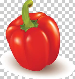 Bell Pepper Vegetable Food Fruit Chili Pepper PNG