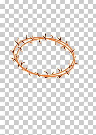 Crown Of Thorns Thorns PNG