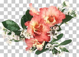 Flower Bouquet Desktop Gladiolus Cut Flowers PNG