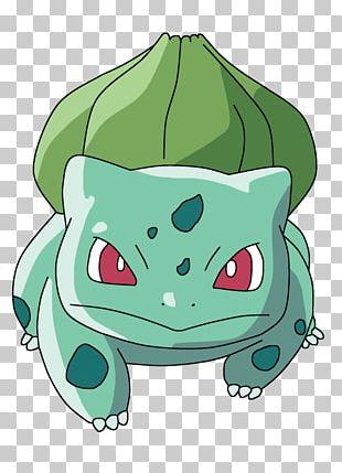 Bulbasaur Pokémon GO Pokkén Tournament Pokémon Sun And Moon PNG