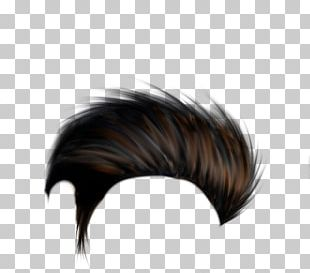 PicsArt Photo Studio Hairstyle Hair Coloring PNG