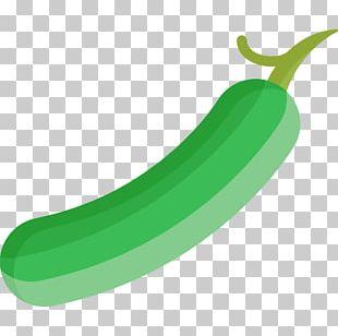 Cucumber Vegetable Fruit Watermelon Food PNG