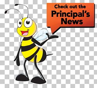 Honey Bee Longitudinal Data System Elementary School Head Teacher PNG