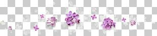 Purple Flower Violet PNG