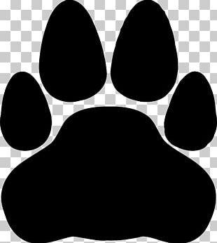 Sphynx Cat Donskoy Kitten PNG