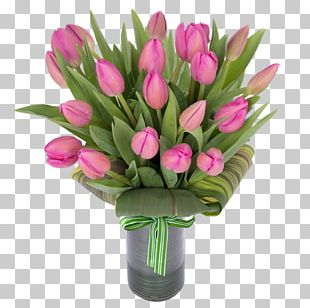 Tulip Flowerpot Flower Bouquet Vase Cut Flowers PNG