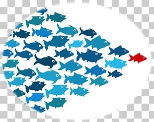 Leadership Development Thought Leader Business Management PNG