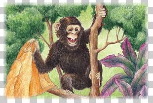 Common Chimpanzee Gorilla Neandertal Monkey Human Behavior PNG