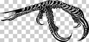 Bird Tiger Reptile Claw PNG