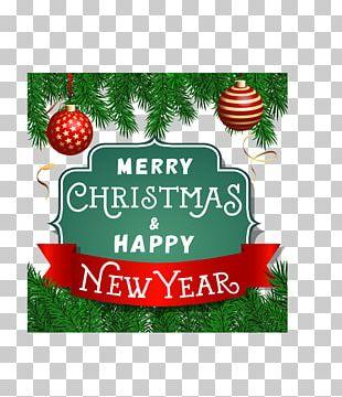 Christmas Ornament Greeting Card Christmas Tree PNG