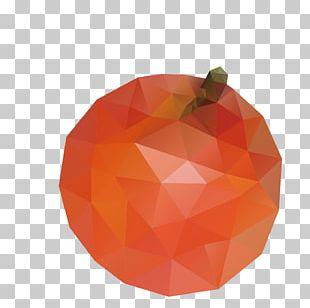 Orange Red Rojo Naranja PNG