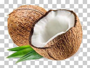 Coconut Water Coconut Milk Coconut Oil PNG