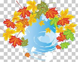 Maple Leaf Autumn Leaves Graphics PNG
