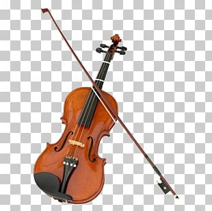 Violin Stock Photography Musical Instruments String Instruments Fiddle PNG