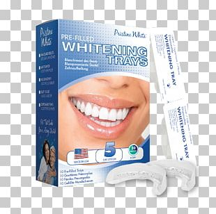 Tooth Whitening Bleach Dentistry Human Tooth PNG