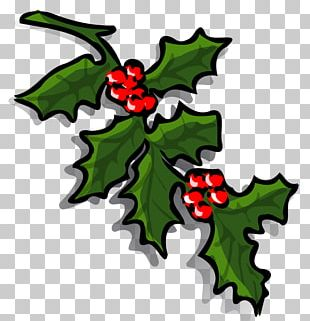 Common Holly Borders And Frames Christmas PNG