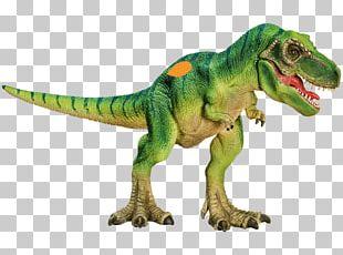 Triceratops Tyrannosaurus Camarasaurus Spinosaurus Dinosaur PNG