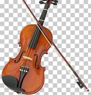 Violin String Instruments Musical Instruments Fiddle Viola PNG