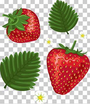 Strawberry Cake Shortcake PNG