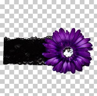Flower Violet Headband Purple PNG