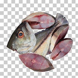 Cod Fish Products Mackerel Oily Fish PNG
