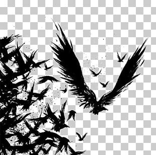 Common Raven Tattoo Drawing Odin PNG