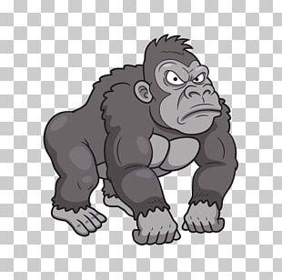 Gorilla Primate PNG