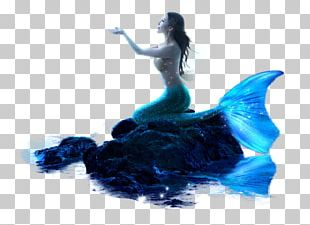 The Little Mermaid PNG