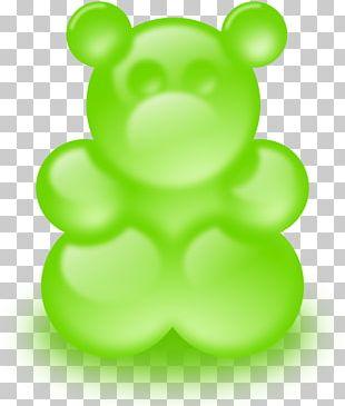 Gummy Bear Gummi Candy Chewing Gum PNG