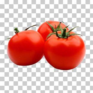 Tomato Juice Tomato Soup Pasta Italian Cuisine PNG