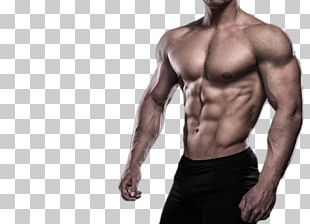 Physical Fitness Bodybuilding Muscle Weight Training PNG