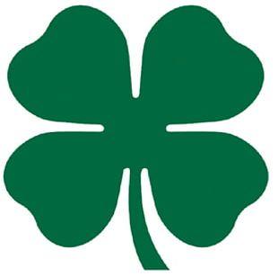 Four-leaf Clover Shamrock Luck PNG