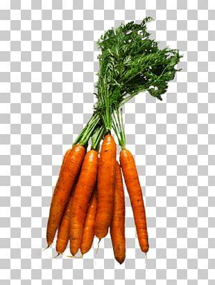 Baby Carrot Leaf Vegetable Fruit Food PNG