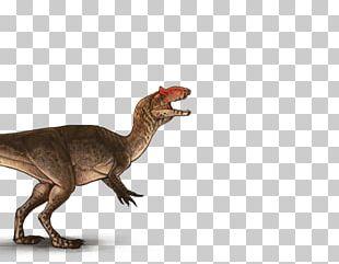 Tyrannosaurus Allosaurus ARK: Survival Evolved Spinosaurus Dinosaur PNG