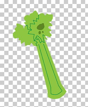 Celery Dietary Fiber Leaf PNG