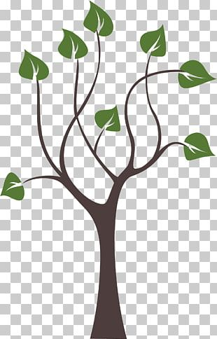 Tree Paper PNG
