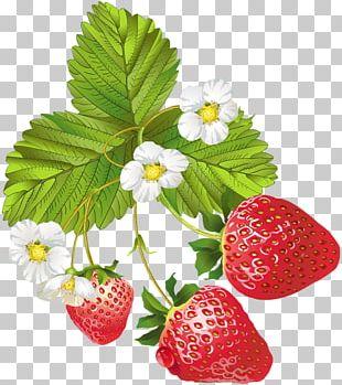 Strawberry Ice Cream Fruit PNG