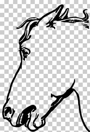 Arabian Horse Cat Horse Head Mask PNG