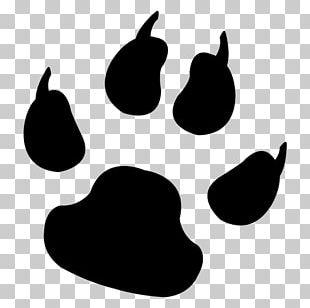 Dog Paw Animal Track Cat Footprint PNG