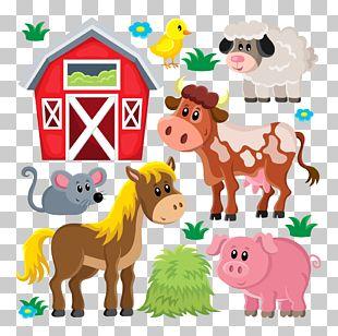 Domestic Pig Livestock Sheep Farm PNG
