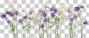 Wedding Invitation Borders And Frames Flower Frames PNG