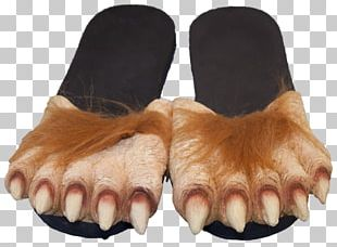 Slipper Foot Werewolf Gray Wolf Big Bad Wolf PNG