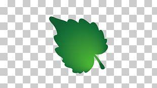 Leaf Tree Euclidean Computer Nature PNG