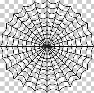 Spider-Man Spider Web PNG