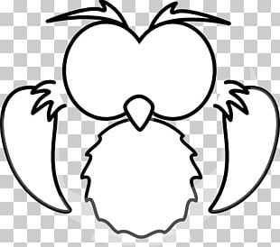Owl Drawing Cartoon Black And White PNG