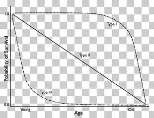 Survivorship Curve Chart Geometry Statistics PNG