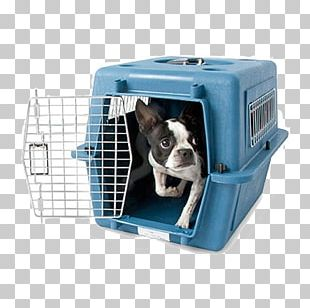 Dog Crate Cat Kennel Pet PNG